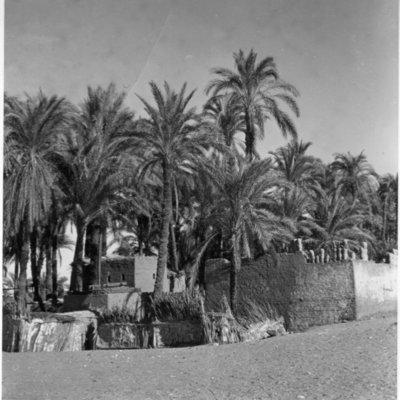 Vue contemporaine d'Ernest Will en Egypte.