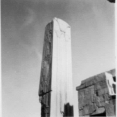 Karnak, Sanctuaire d'Amon, cours axiale du VIe Pylône, naos de Philippe Arrhidée, devant la Chapelle de la Barque, Pilier héraldique nord de Thoutmosis III.