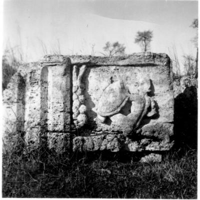 Poséidonia-Paestum, temple de la Paix, élément de la frise.