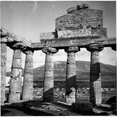 Poséidonia-Paestum, temple d'Athéna, façade Est.