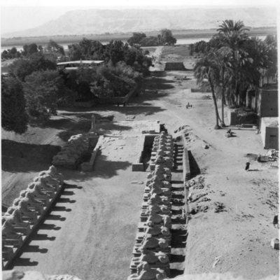 Karnak, Parvis du Temple, dromos vus depuis le Sud-Ouest du haut du premier Pylône.
