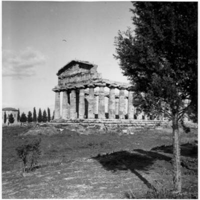 Poséidonia-Paestum, temple d'Athéna, façade Ouest et côté Sud