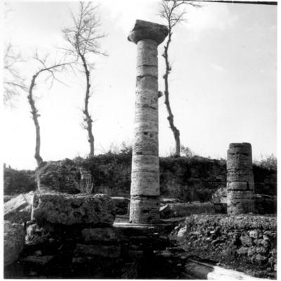 Poséidonia-Paestum, colonne du forum.