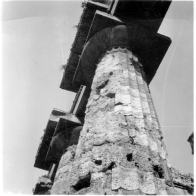 Poséidonia-Paestum, temple de Poséidon, colonne.